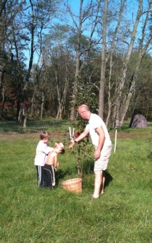Harvesting fruit with our elementary age boys is really rewarding. (Photo: Crossroads Homestead)